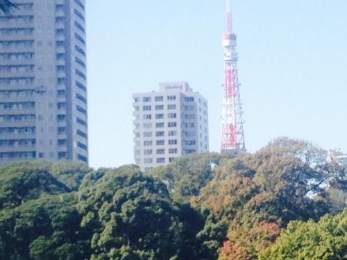 Tokyo Tower as seen from Hamarikyu Gardens